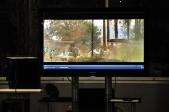 """В Краеведческом музее г. Салавата прошло кинообсуждение фильма """"Отстреливая собак"""""""